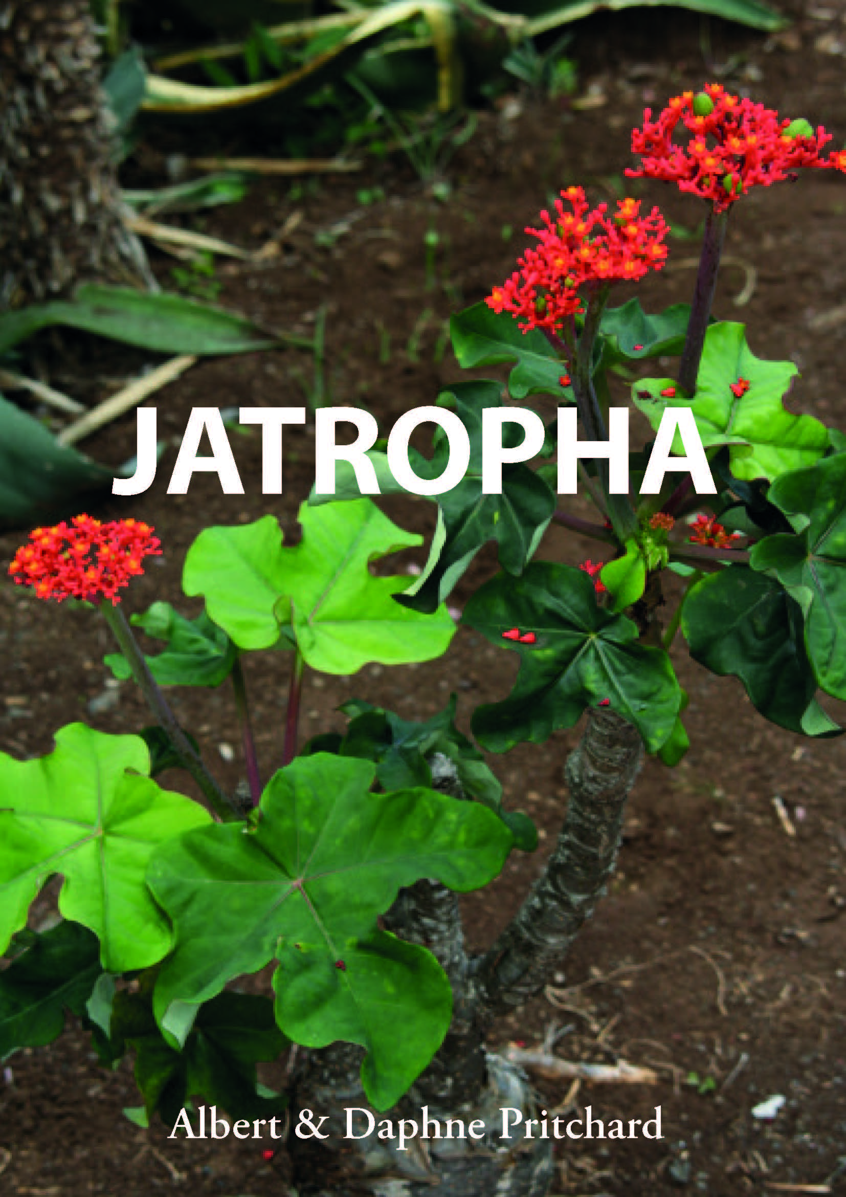 Jatropha Book cover image